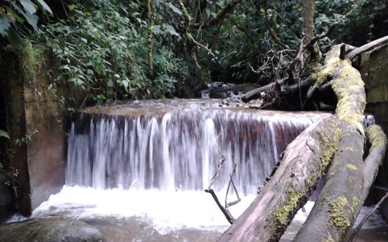 Municipio Sotará, Departamento del Cauca