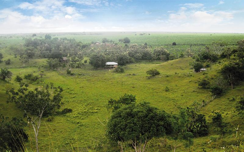 Zona Bananera - Urabá Antioqueño